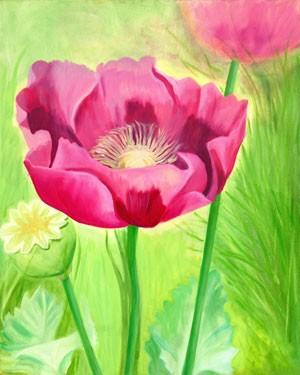 Pink Poppies (unframed)