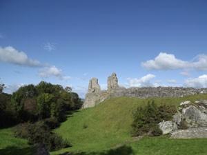 Montgomery Castle - print