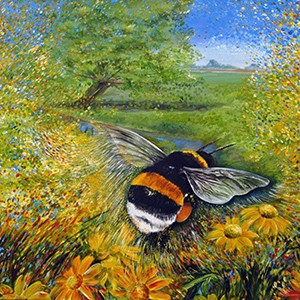 Bombus in the Meadow - giclee print from £45