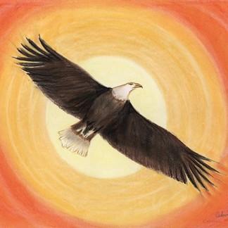 Eagle - Giclee Print