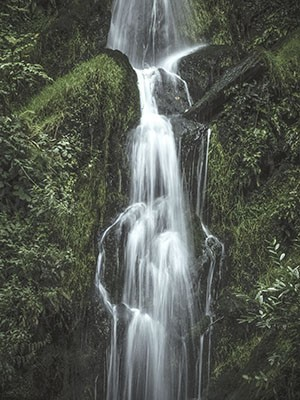 Falling Water - Print on Canvas
