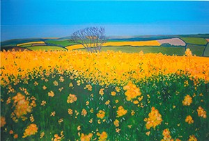 Rapeseed, Kingsbridge, Devon, original acrylic