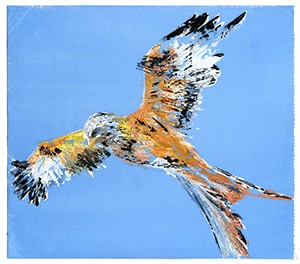Red Kite 2- Giclee Print A4